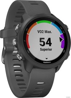 Умные часы Garmin Forerunner 245 (серый) (50847)