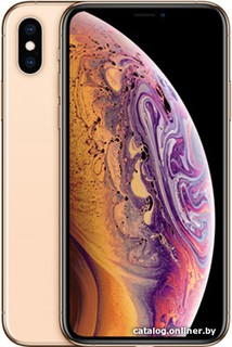Смартфон Apple iPhone XS 512GB (золотистый) (56697)