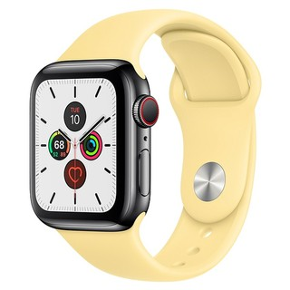 Apple Watch Series 5 GPS+Cellular 44mm Stainless Steel Case