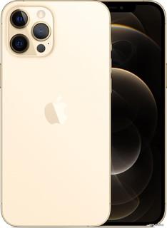 Смартфон Apple iPhone 12 Pro Max 256GB (золотой) (57013)