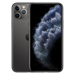Apple iPhone 11 PRO Max 256GB (Gray)