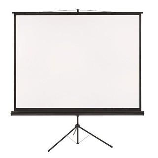 Экран для проектора (244 х 244 см)