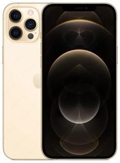 Смартфон Apple iPhone 12 Pro Max 256GB (Gold)