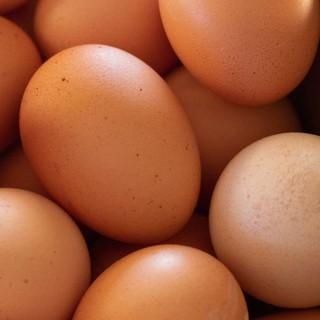 Яйца с двумя желтками,1шт