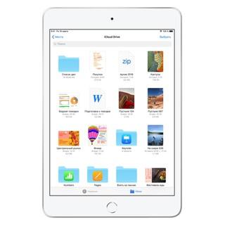 iPad Mini 5 256GB 2020 Wi-Fi + Cellular 4G