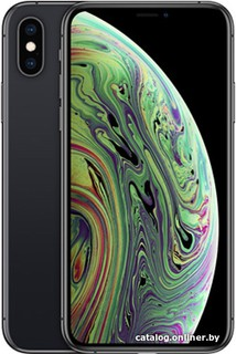 Смартфон Apple iPhone XS 512GB (серый космос) (56696)