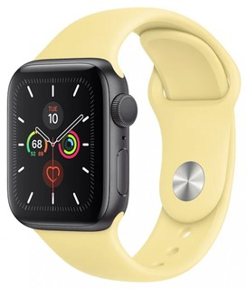 Смарт часы Apple Watch Series 5/40 mm Gold