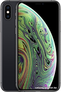 Смартфон Apple iPhone XS 64GB (серый космос) (57798)